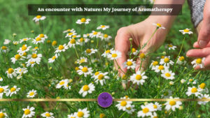 An encounter with Nature