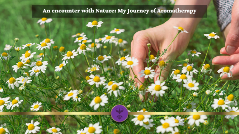 An encounter with Nature: My Journey of Aromatherapy